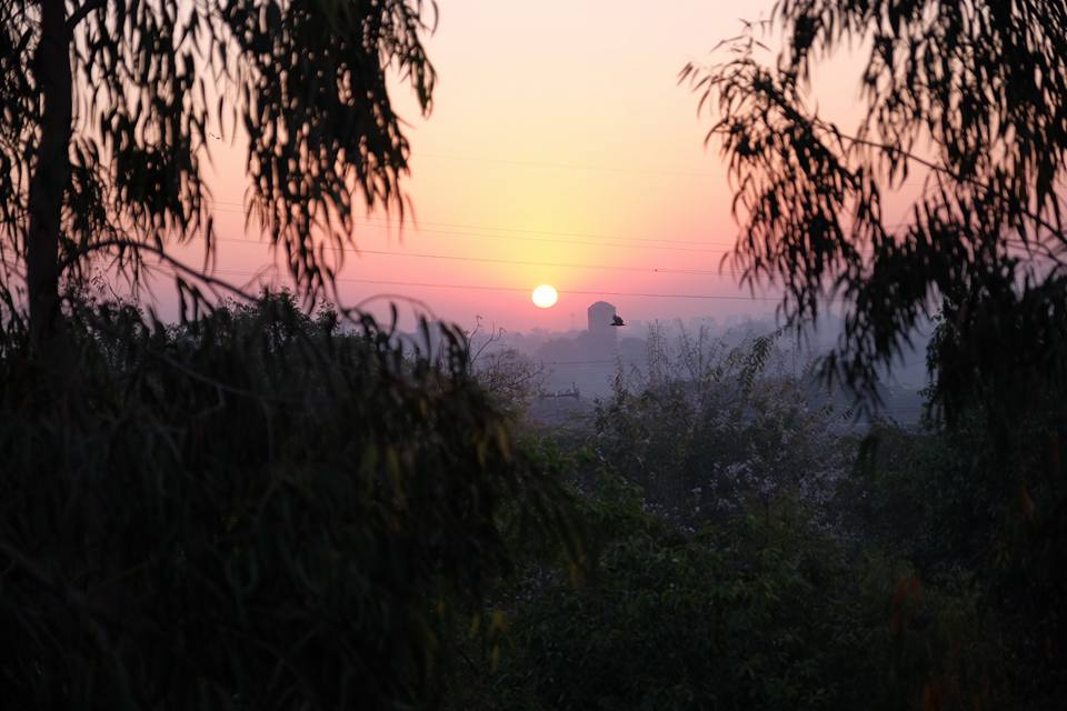 Sunrise view from Hearfulness Ahmedabab